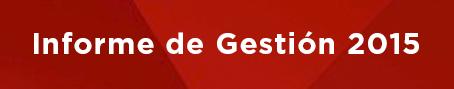 Benner Informe de Gestion 2015